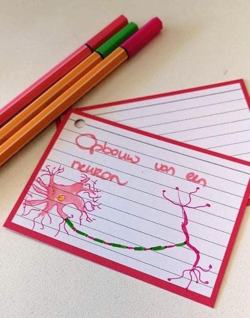 Flashcard opbouw van een neuron